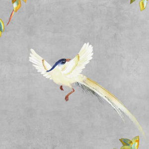 vinyl wallpaper trompe l'oeil painting china love birds grey