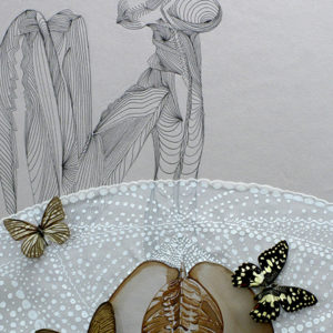 le petit prince open boa painting collage watercolor evolution butterflies